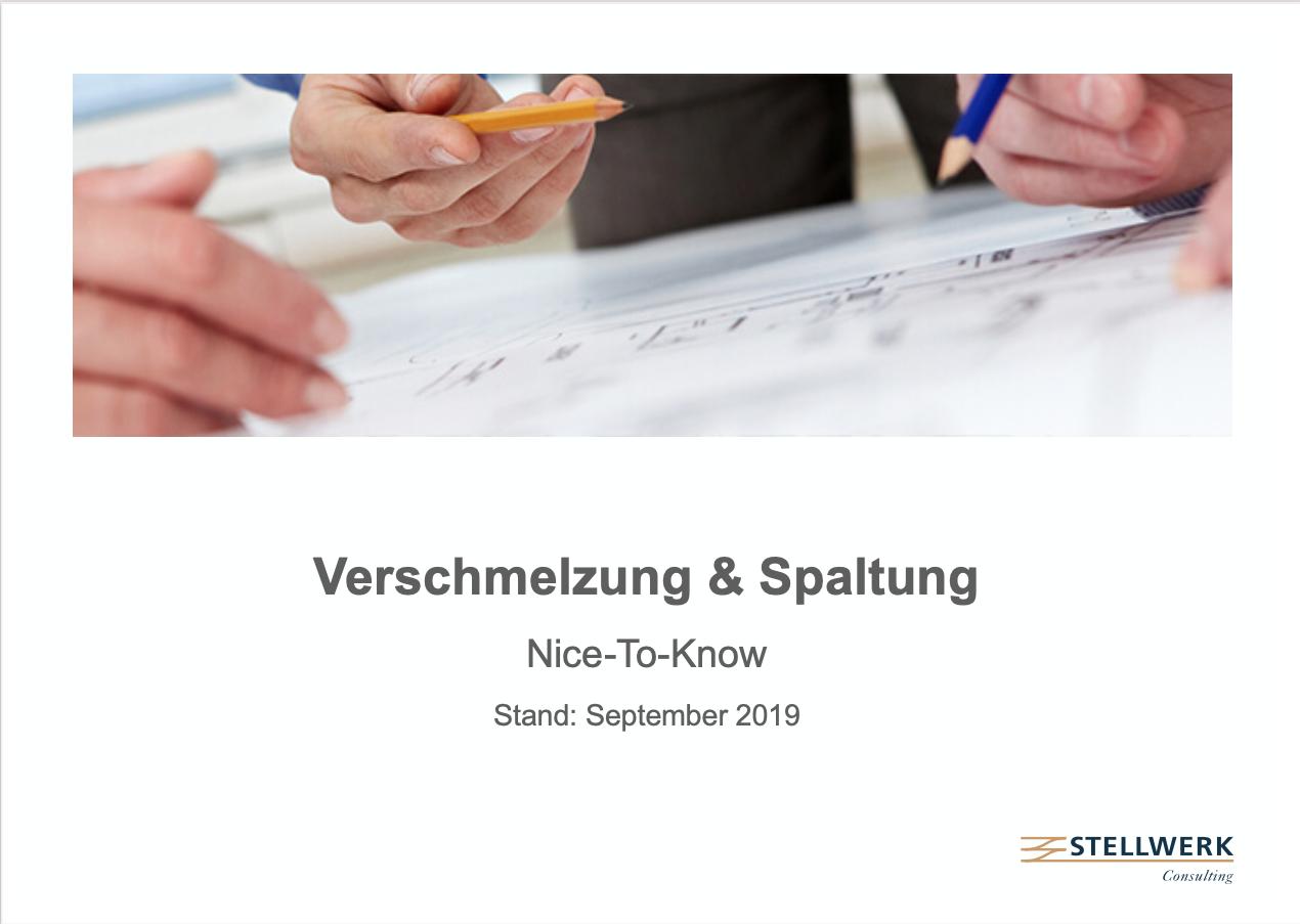 Verschmelzung_und_Spaltung_SAP_02